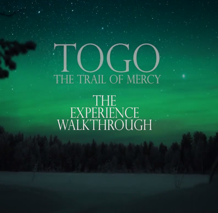 Follow Togo as he goes on a journery to deliver the serum to save the children of Nome, a                                  village in Alaska from epidemic. Created with the Drama department of CMU.                                 Platform: Oculus Rift, Date: Fall 2017